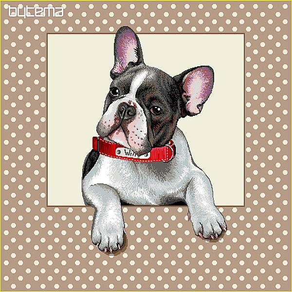 Gobelin Kissenbezug Französische Bulldogge Bytema