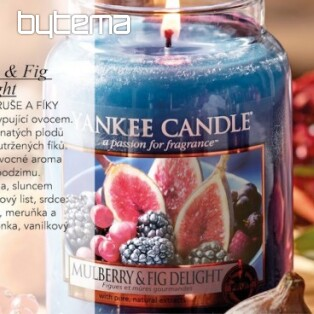 Kerze YANKEE CANDLE Duft MULBERRYFIG DELIGHT